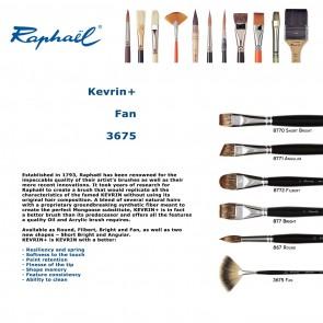 Raphael Kevrin+ 3675  (Fan)