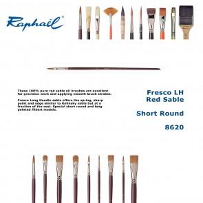 Raphael Fresco LH Red Sable 8620 (Short Round)